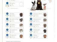 Beliebteste Hunderassen 2018: Labrador auf Platz eins - Dackel erlebt Revival