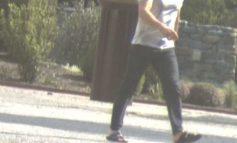 POL-HB: Nr.: 0044--Lkw samt Anhänger gestohlen - Polizei fahndet mit Fotos nach Verdächtigen--