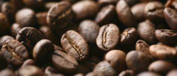 Kaffee in der Krise: Wie die Marktgiganten auf Kosten der Bauern profitieren