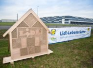 """""""Jeder Quadratmeter zählt"""": Lidl-Lebensräume rollt Programm zum Wildbienen- und Artenschutz weiter aus"""