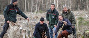 real spendet 55.000 Euro für sauberes Trinkwasser / Pflanzarbeiten für den real Trinkwasserwald beginnen Ende März