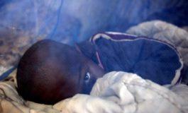 Weltweit erste Malaria-Impfkampagne in Malawi gestartet
