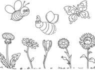 Postcode Effekt: Über 800.000 Euro für (Wild-)Bienen und Insekten