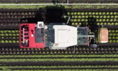 Bauern und Industrie bremsen grüne Welle aus