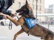 Bundespolizeidirektion München: Kinder allein unterwegs -  Diensthund verkürzt Wartezeit