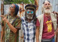 «Inna de Yard»: Die Altherren unter Jamaikas Himmel