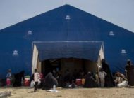 Angehörige von IS-Kämpfern sollen zurück in Heimat