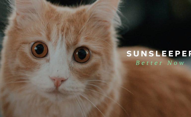 Sunsleeper – Better Now (Official Music Video)