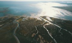 Niederländische Nationalparks / Tipps für den Herbst: Neuer Vogelboulevard, 11-Strände-Tour und Wattwanderung