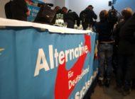 Forsa: Union vor Grünen - AfD verliert