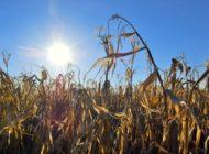 In Zeiten des Klimawandels wirtschaftlich bleiben - Dritte e2m-Wintertagung für Biogas-Anlagenbetreiber am 21. Januar 2020 in Walsrode