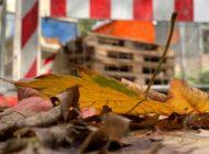 Wetterfeste Baustelle: Sicher durch den Herbst