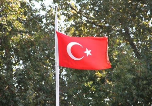 Grüne fordern deutlichere Konsequenzen in der Türkei-Politik