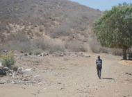 Avocado-Plantagen für Konzerne statt Trinkwasser für die Menschen