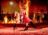 """Geschenktipp zu Weihnachten: CAVALLUNA - """"Legende der Wüste"""" / Ein märchenhaftes Abenteuer durch den Orient"""