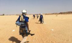 Landminen Monitor 2019: Das vierte Jahr in Folge besonders viele Minenunfälle