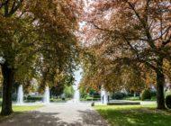 """""""Nachhaltigkeit in der Kommune gestalten"""": Anmeldung für Seminar auf der IPM ESSEN 2020 läuft / BdB lädt zum nächsten Seminar im Rahmen von """"Grüne Städte für ein nachhaltiges Europa"""" ein"""