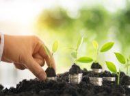 forsa-Studie: Investmentverhalten der Deutschen bei grünen Anlagen. Was zieht mehr - Rendite oder Klimaschutz?