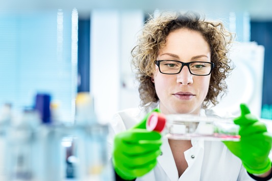 """Scharf gemachtes"" Immunsystem bekämpft Krebszellen von selbst"