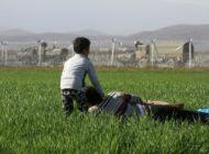 IOM empfiehlt Abbau von Migrationsbarrieren
