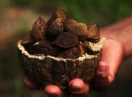 Naturkosmetikherteller Laverana ist ein klimaneutrales Unternehmen