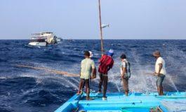EDEKA-Verbund mit wegweisendem Schritt für deutschen Markt und Umwelt: Thunfisch nur noch mit Umwelt-Siegel