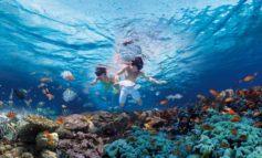 """Verantwortungsbewusstes Reisen auf der ITB Berlin: 15. Pow-Wow für Tourismusfachleute - """"Korallen und Riffe"""" einer der Schwerpunkte"""