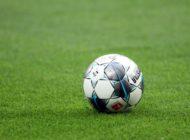 Umfrage: Jeder Zweite für Bundesliga-Fortführung ab Mai