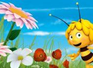 Die Biene Maja und der NABU - gemeinsam für den Insektenschutz