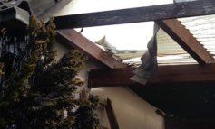 POL-Bremerhaven: Erst der Baum, dann das Dach