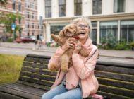 Die Finalisten des Purina BetterwithPets-Preis 2020 stehen fest: Diese sozialen Projekte nutzen die positive Wirkung der Haustier-Mensch-Beziehung besonders effektiv