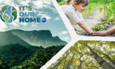 P&G befürwortet natürliche Klimaschutzlösungen und beschleunigt Aktivitäten beim Klimaschutz; sämtliche Geschäftsaktivitäten werden für die Dekade 2020-2030 CO2-neutral