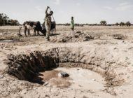"""Coronakrise und Ökologie: """"Als hätte es die Klimakrise niemals gegeben"""""""