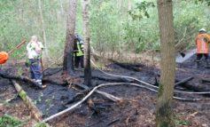 FW-ROW: 200 Quadratmeter Waldboden stehen in Flammen