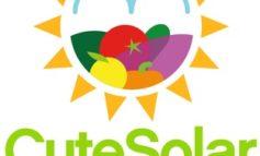 Europäische Obst- und Gemüseproduzenten reagieren auf wachsendes Bewusstsein der Verbraucher für gesunde Ernährung